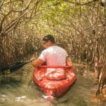 kayaking everglades safe