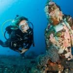 Does Scuba Diving Get Boring