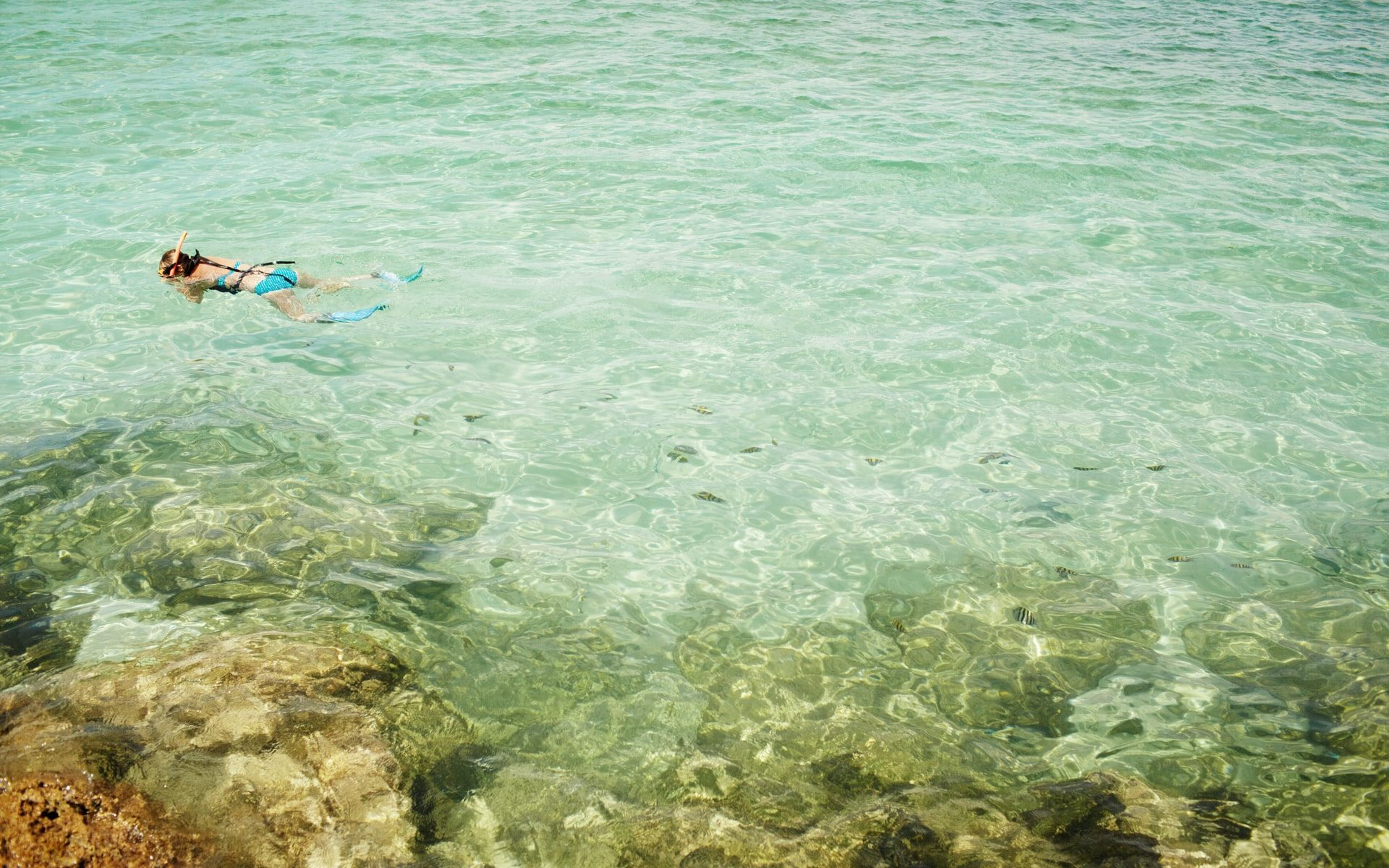 Is Snorkeling Alone Dangerous