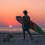 What Do Surfers Do for a Living