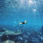 Is Snorkeling Better in Maui or Kauai