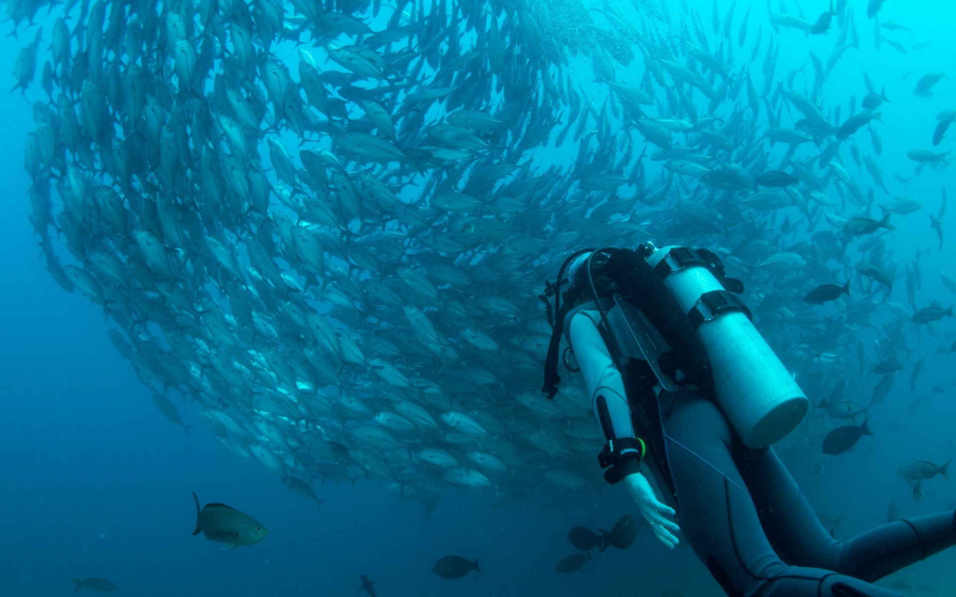 Should I Be Scared of Scuba Diving