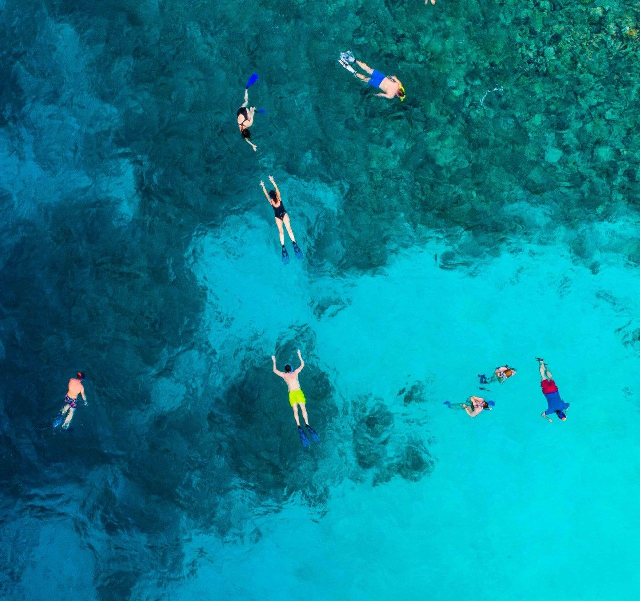 What Colors to Avoid When Snorkeling